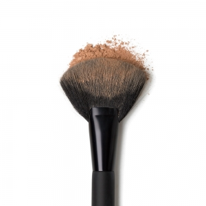 The Fan Brush
