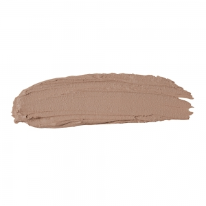 The Full Concealer 302