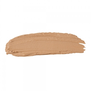 The Full Concealer 305